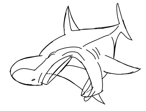 Mako shark drawing