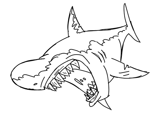 Line Drawing Shark : Line cartoon drawing