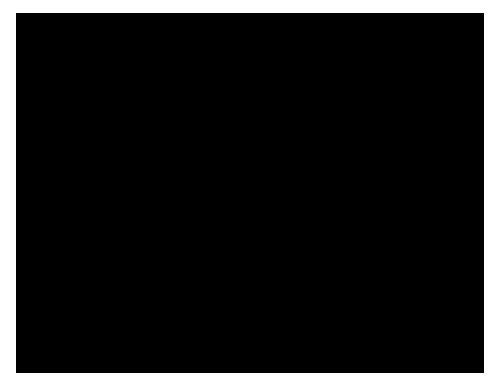 graph paper drawing program
