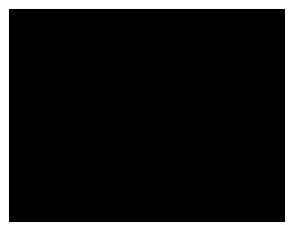 plot diagram graphic organizers - printable graphic organizer pdfs  tim's printables