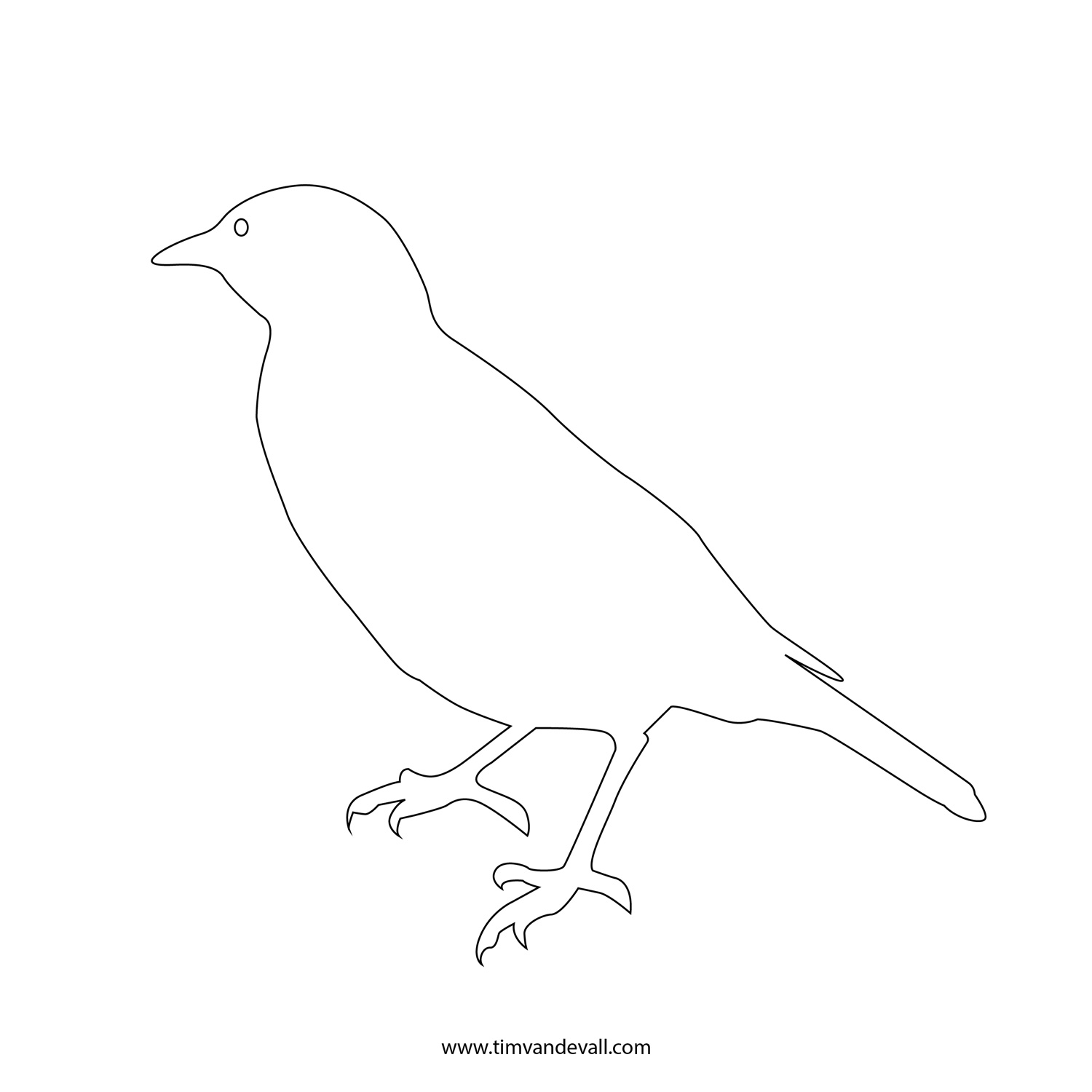 Birds outline - photo#14