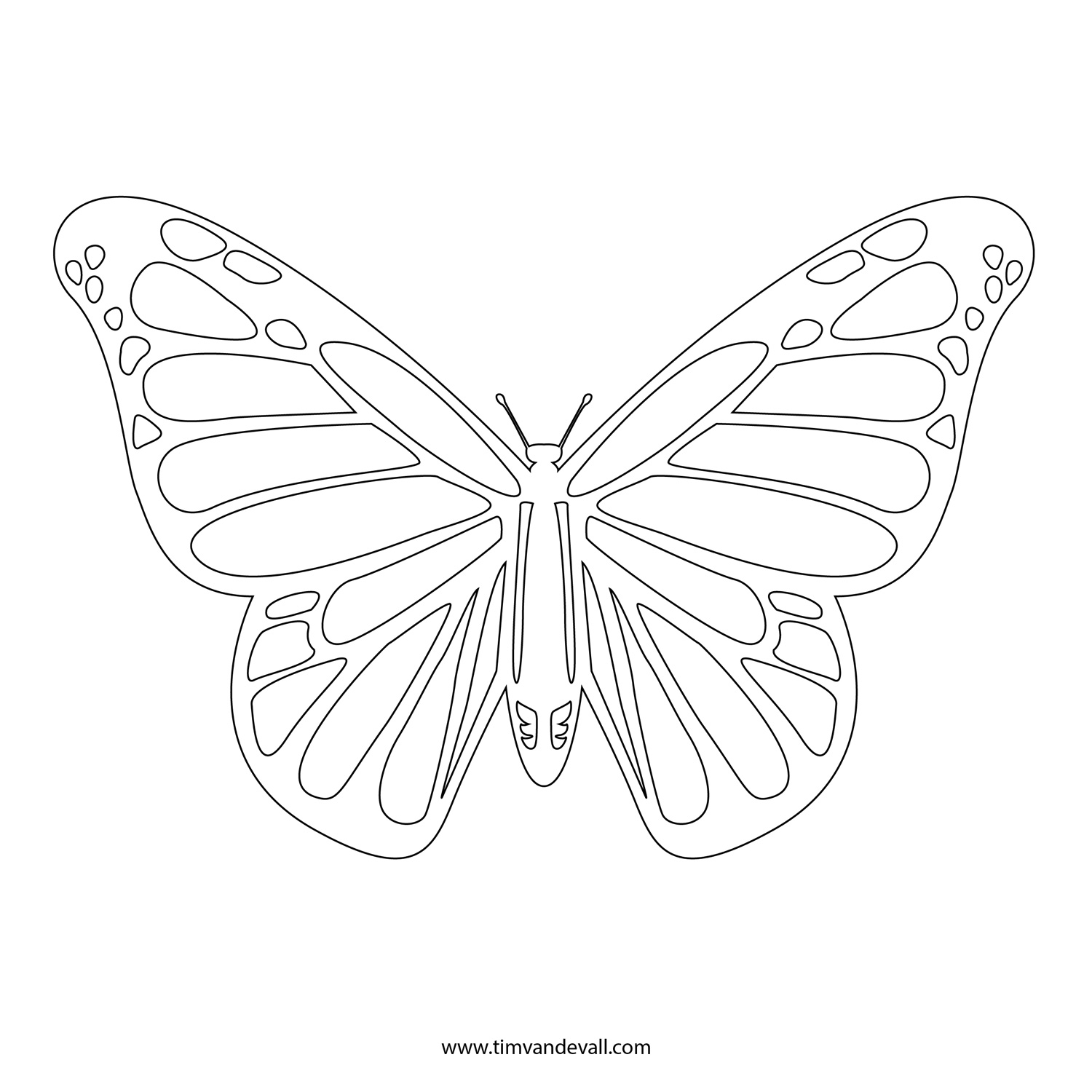 free butterfly stencil monarch butterfly outline and silhouette. Black Bedroom Furniture Sets. Home Design Ideas