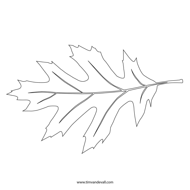 Agile image for printable leaf stencil