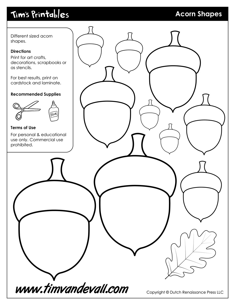 graphic relating to Acorn Printable named Acorn Templates Printable Acorn Designs Blank Form PDFs