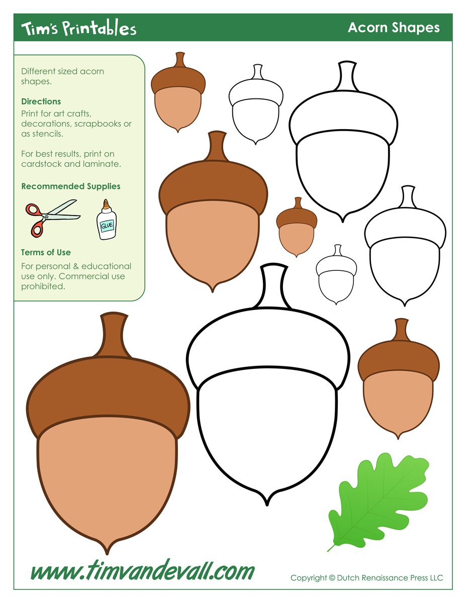 Canny image regarding acorn template printable