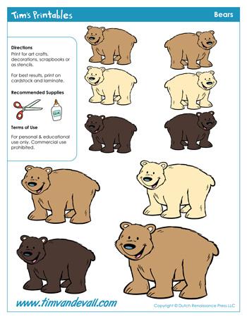 bear shapes