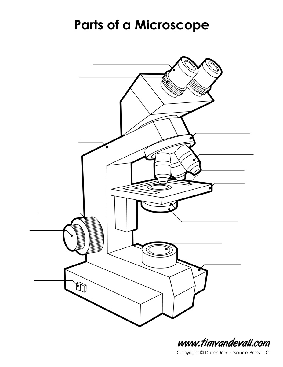 Microscope Diagram Labeled Unlabeled and Blank – Parts of a Microscope Worksheet