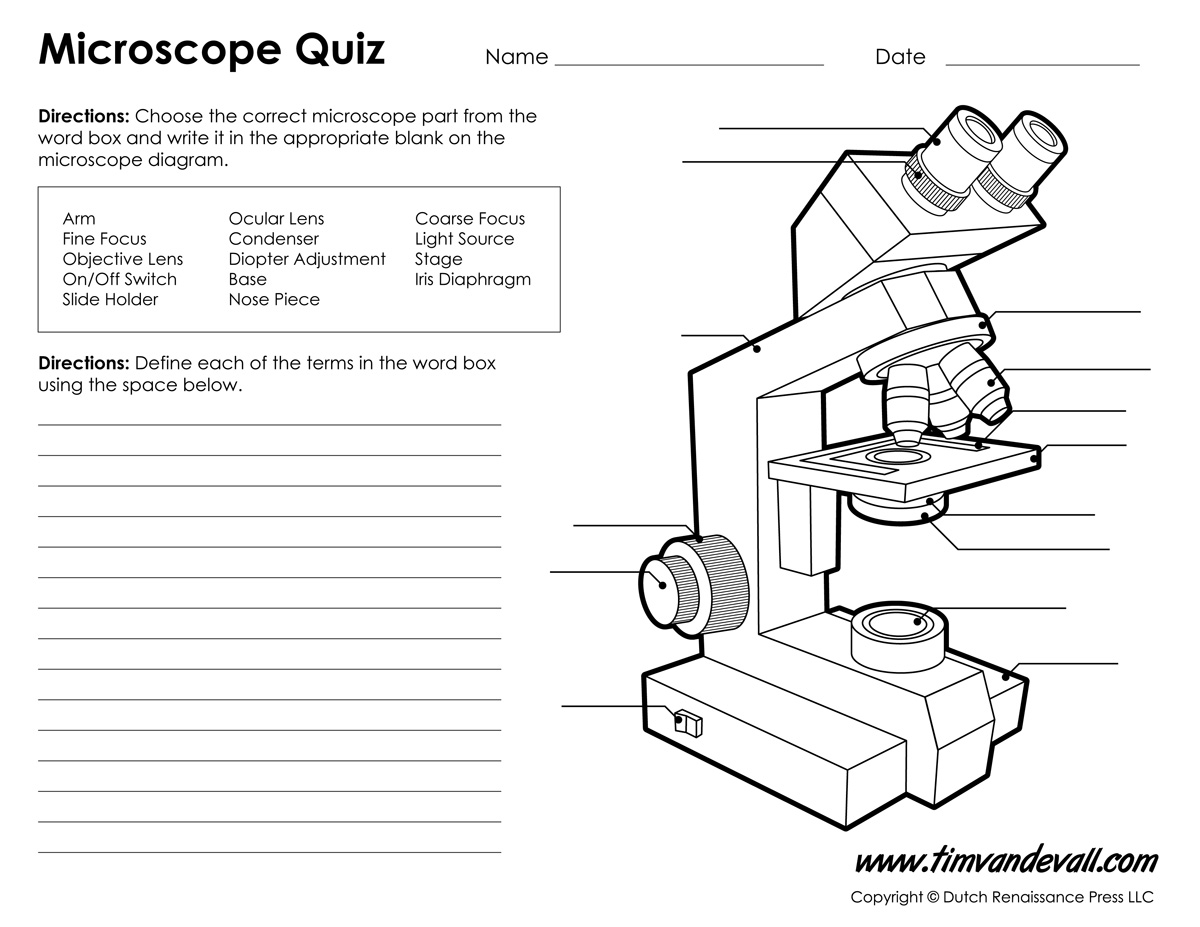 Worksheets Microscope Lab Worksheet microscope diagram labeled unlabeled and blank parts of a worksheet quiz