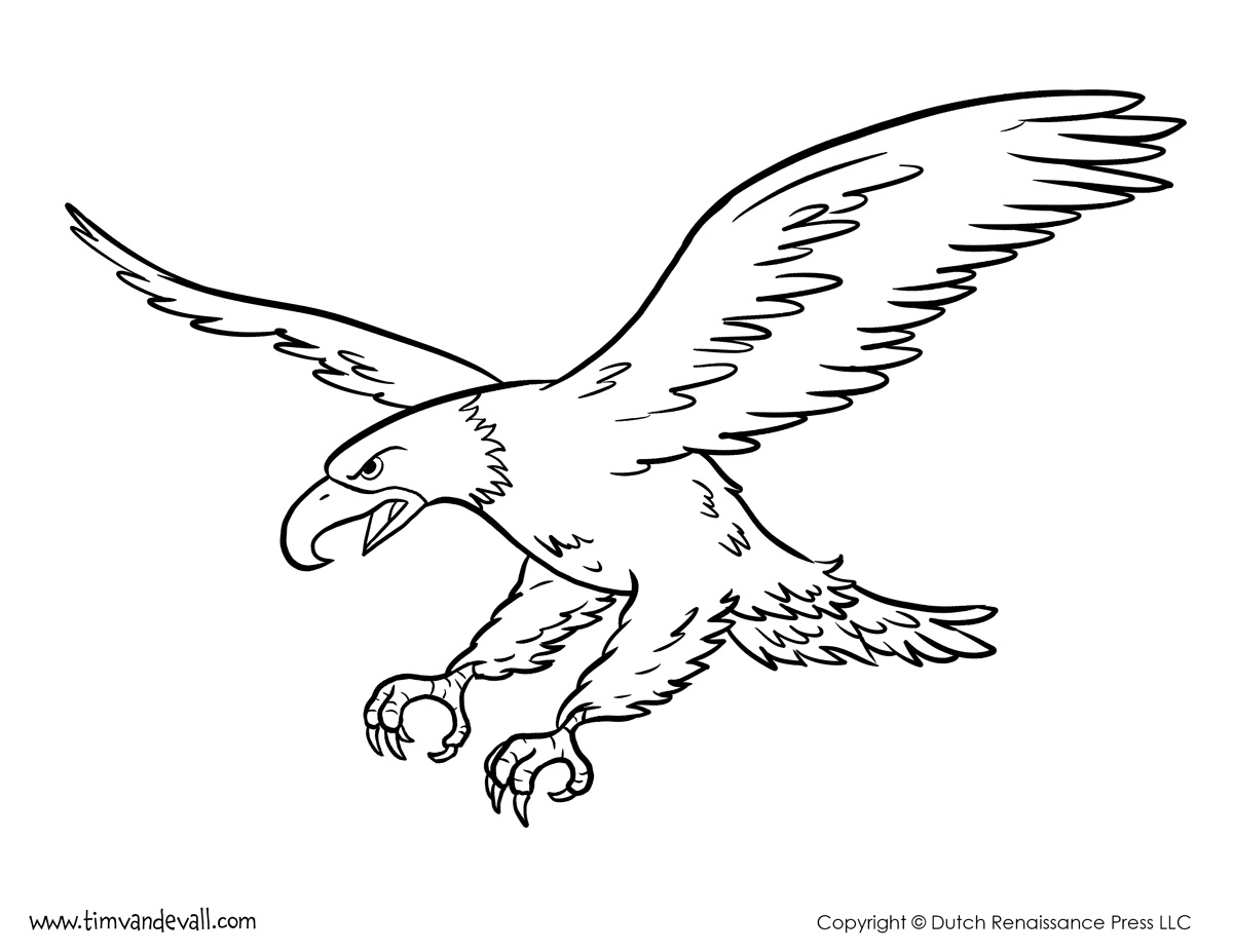 Bald Eagle Coloring Page Tim