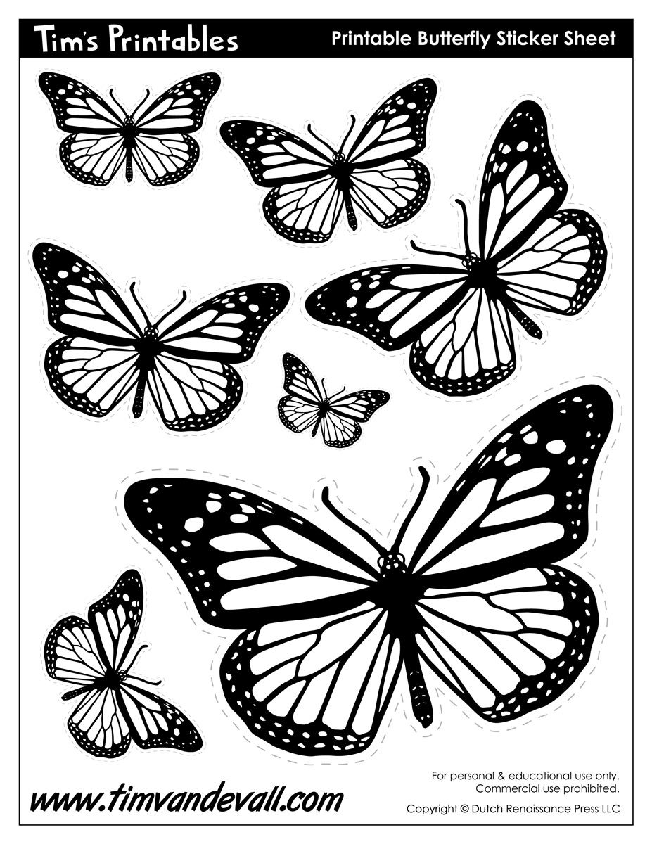 Butterfly Templates Tims Printables