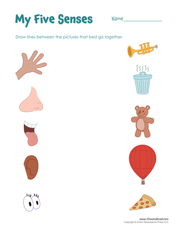 five senses printable