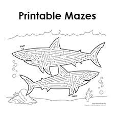 picture relating to Printable Mazes for Adults titled Cost-free Printable Mazes