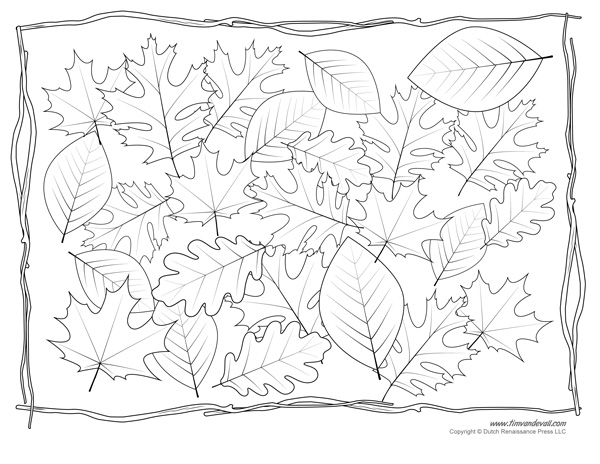 Leaf Coloring Page