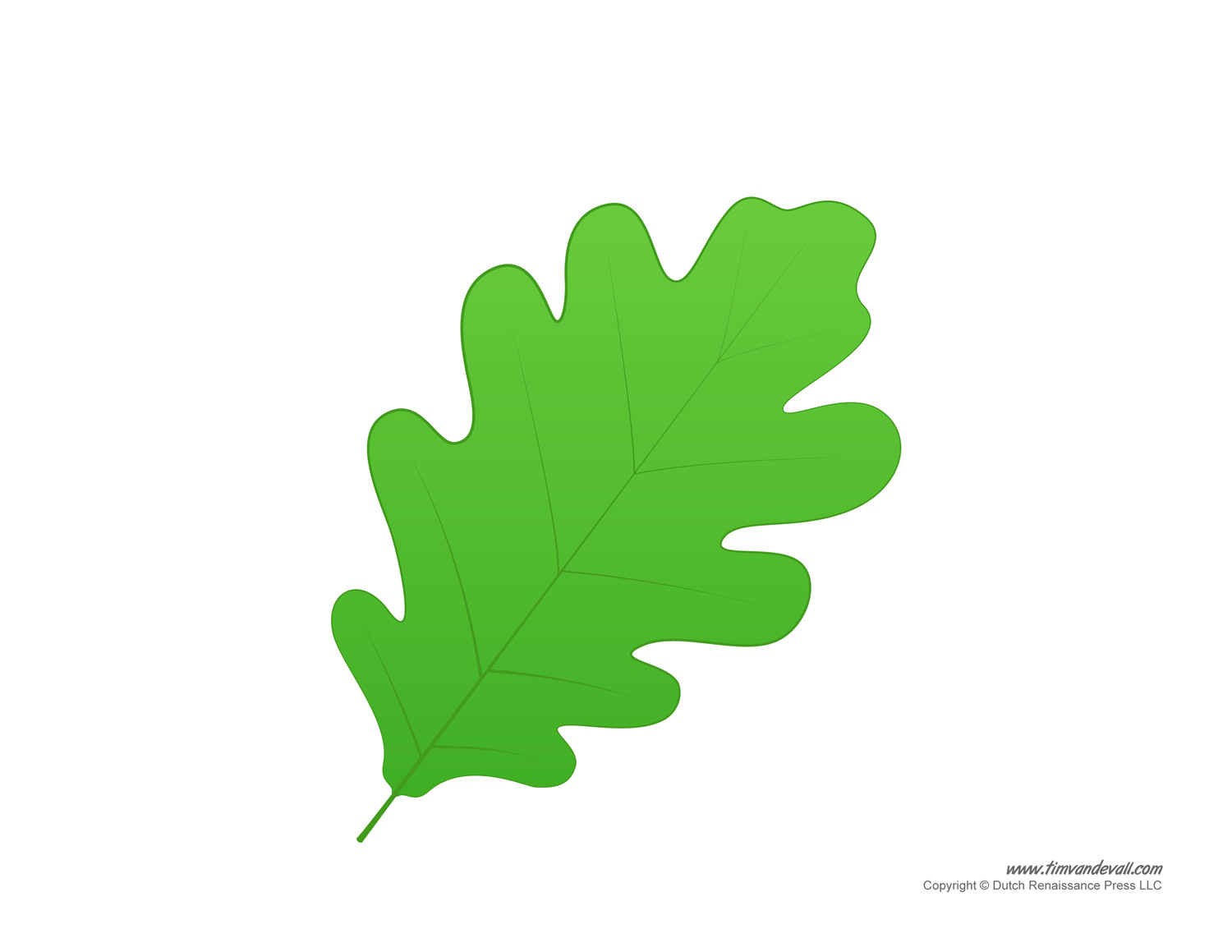 Leaf templates leaf coloring pages for kids leaf printables leaf printable pronofoot35fo Image collections