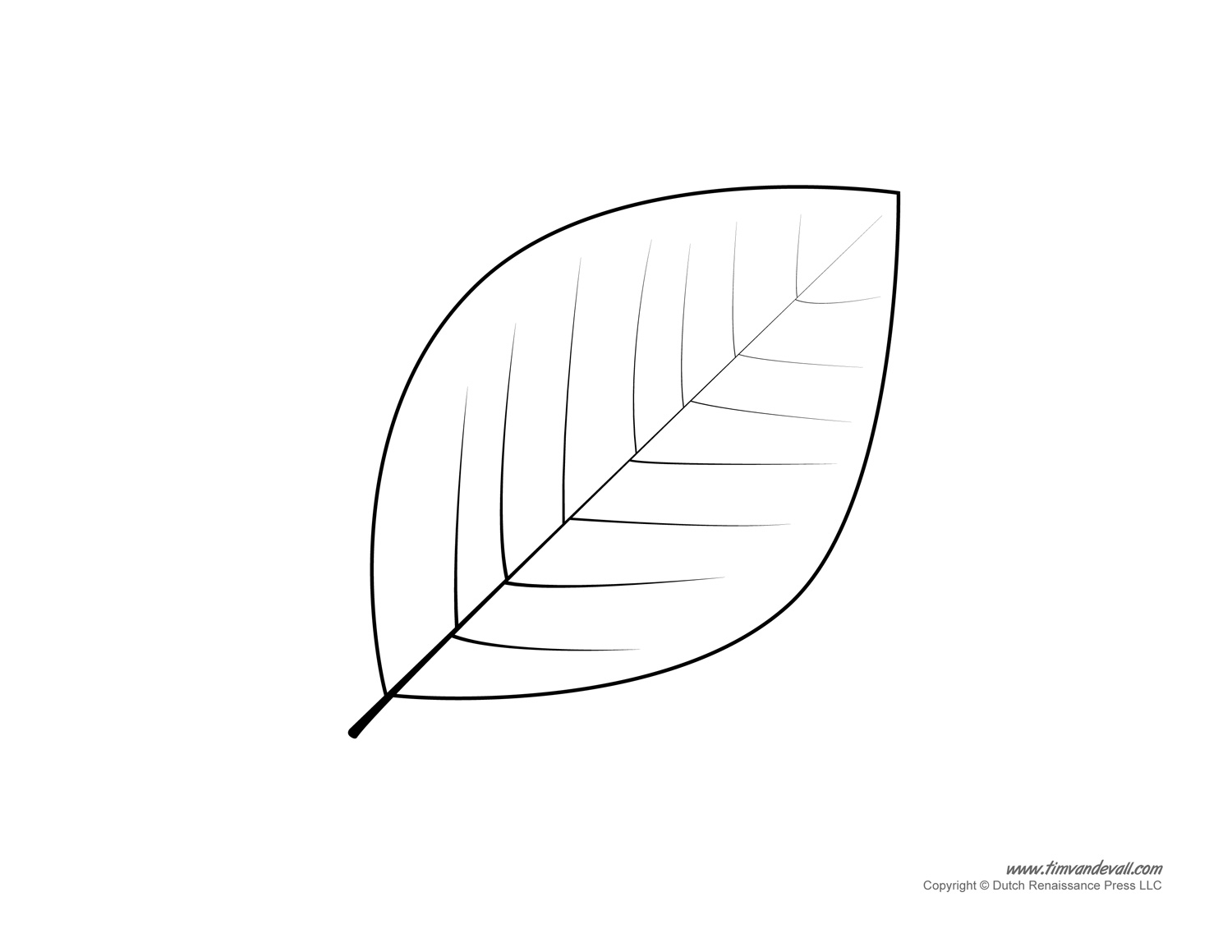 Template Of Leaves Delli Beriberi Co