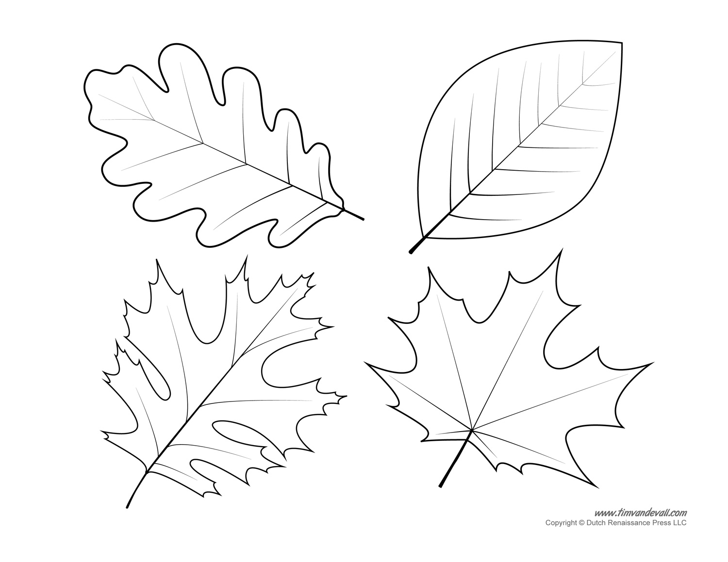 Leaf templates leaf coloring pages for kids leaf for Autumn leaf template free printables