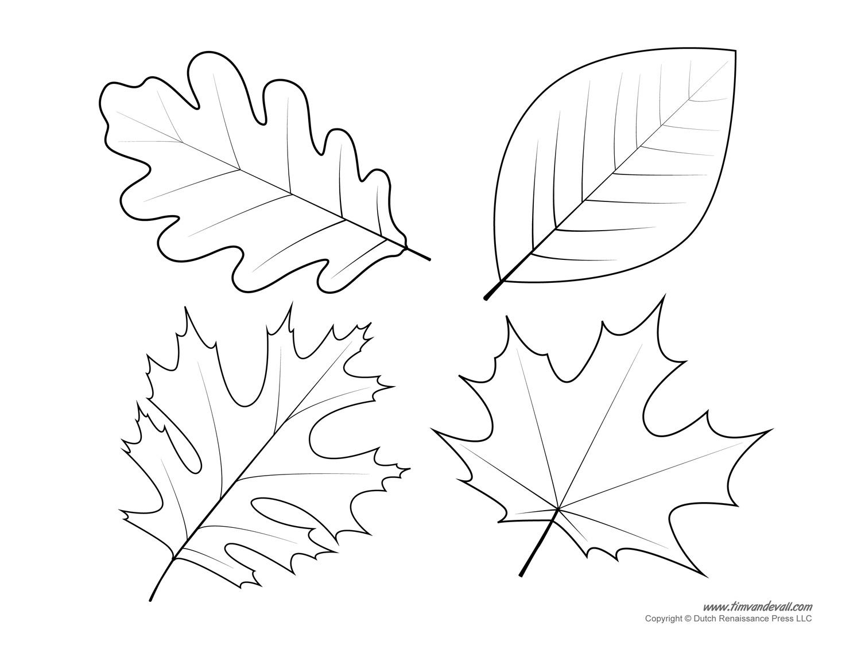 Maple leaf printable template