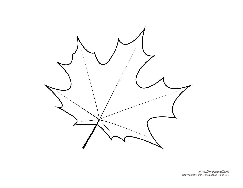 постарались картинки кленовый лист шаблон можете выбрать бюджетный