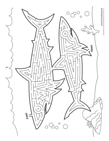 Shark Maze Activity Tim S Printables