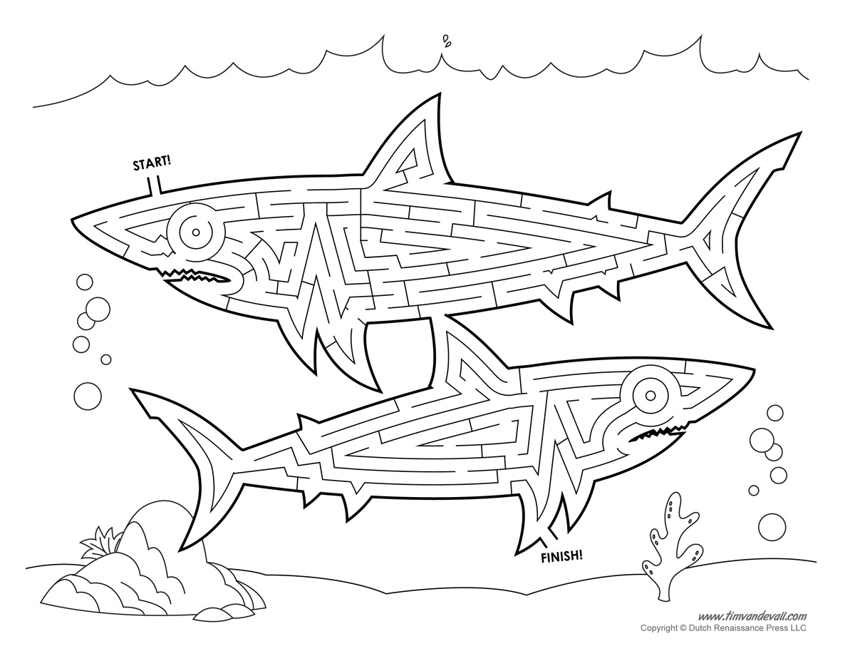 shark maze   tim van de vall