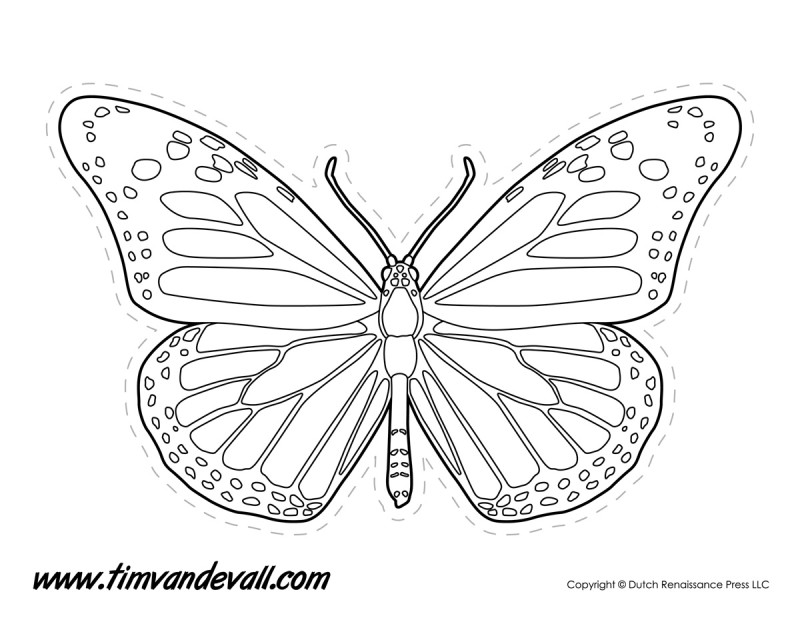 Monarch Butterfly Outline - Tim's Printables