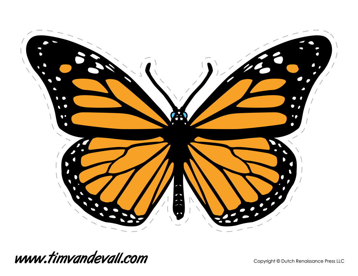 large butterfly template Printable Butterfly Templates and Butterfly Shapes