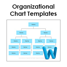 word organizational chart template