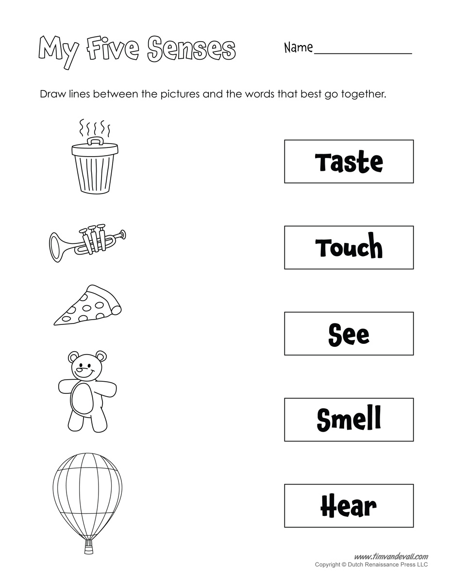 Free Five Senses Worksheets for Kids – 5 Senses Worksheets Kindergarten