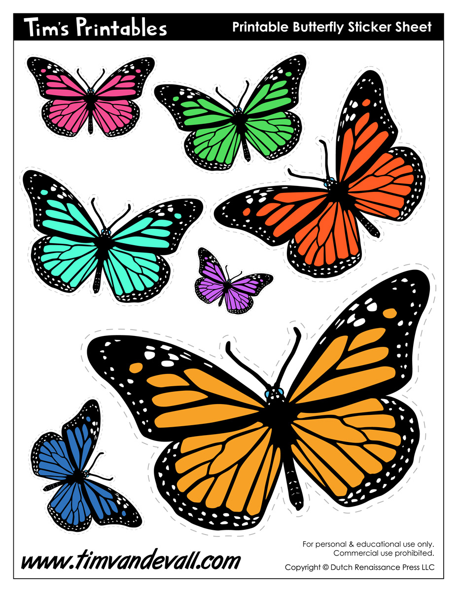 graphic about Printable Butterfly Pictures referred to as Printable Butterflies - Tims Printables