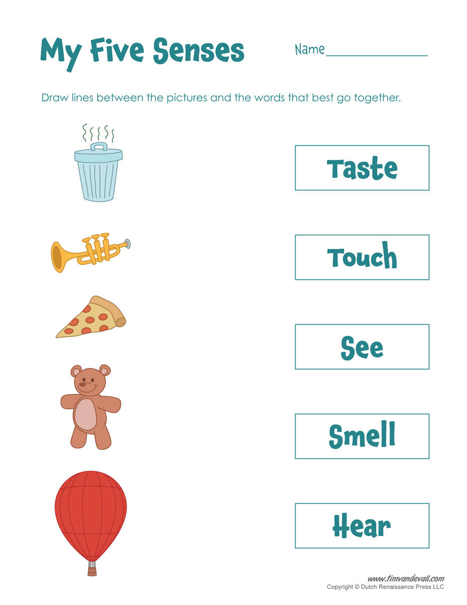 Uncategorized The Five Senses Worksheets free five senses worksheets for kids 5 craft printable worksheet worksheet