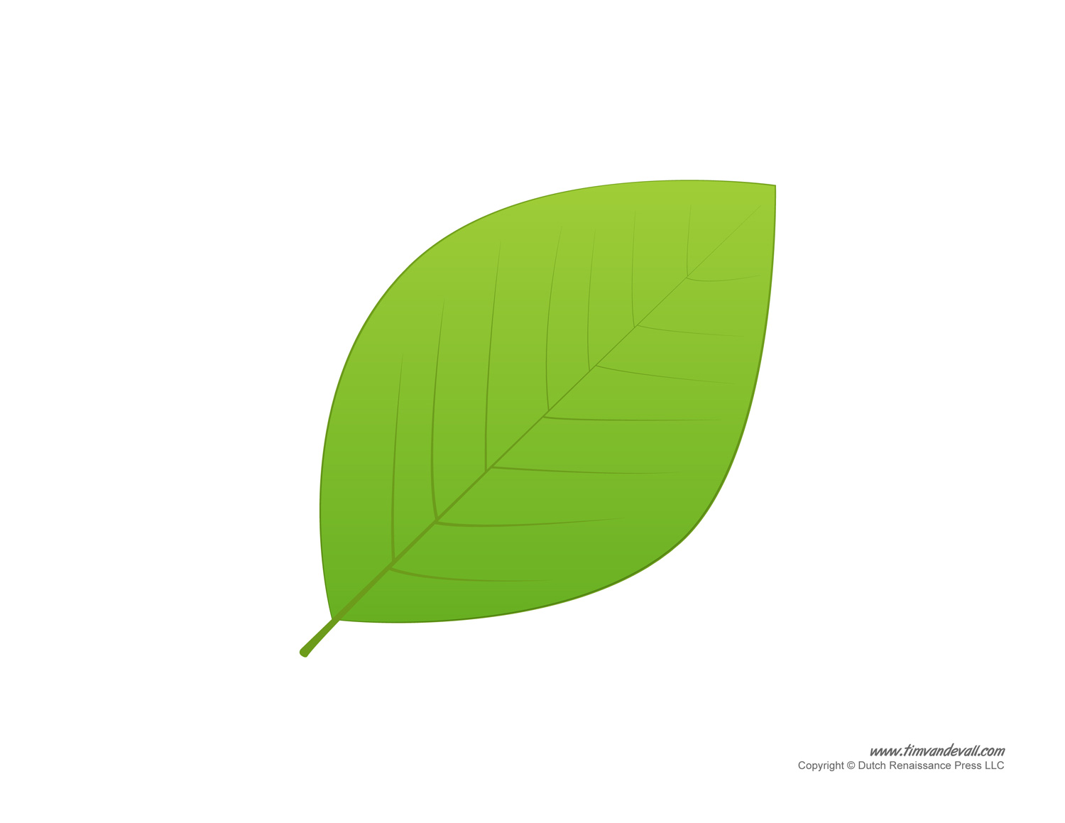 Free Coloring Pages Of The Leaf Is Green