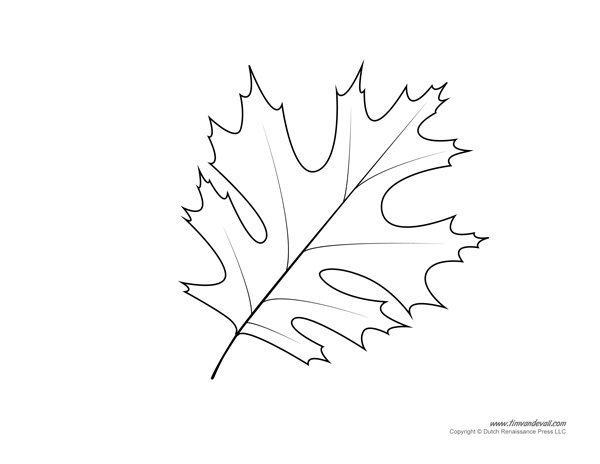 Printable Leaf Template