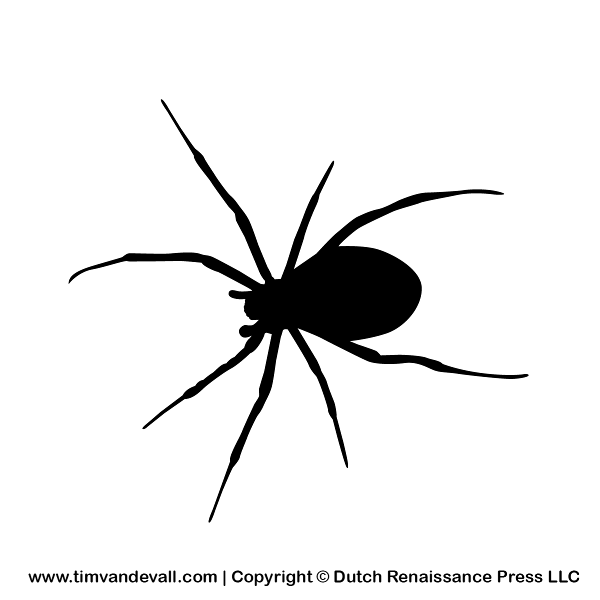Images Of Halloween Spiders