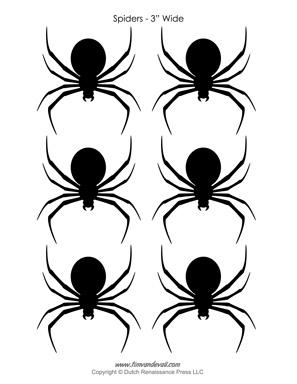 Spider Stencils