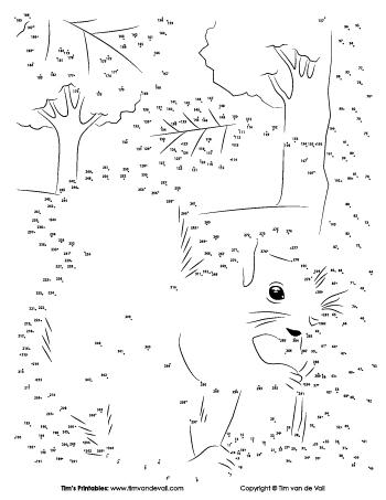 squirrel-dot-to-dot