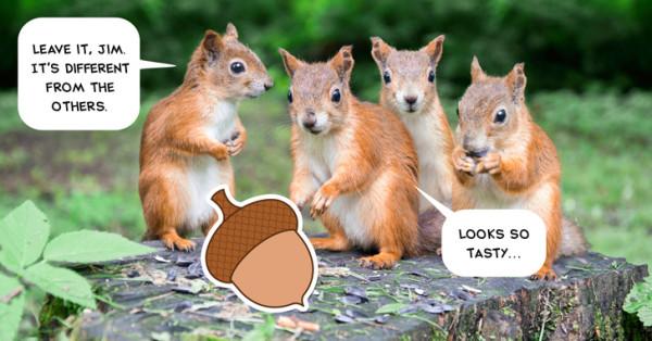 squirrels-and-acorn