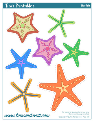 Starfish Shapes
