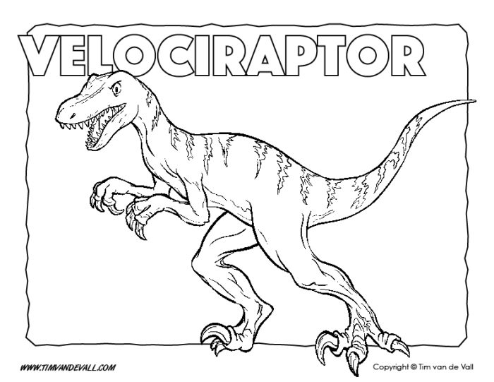baby velociraptor coloring pages | Free Printable Dinosaur Coloring Pages for Kids - Tim's ...